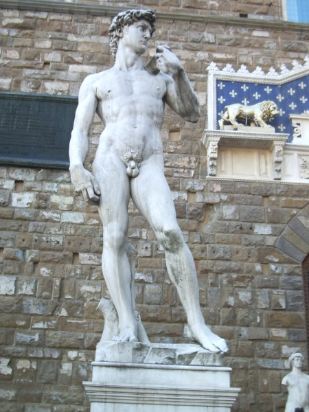 Michaelangelo's David - Florence - picture by Australian artist and musician Tony Scott - the King Hunter